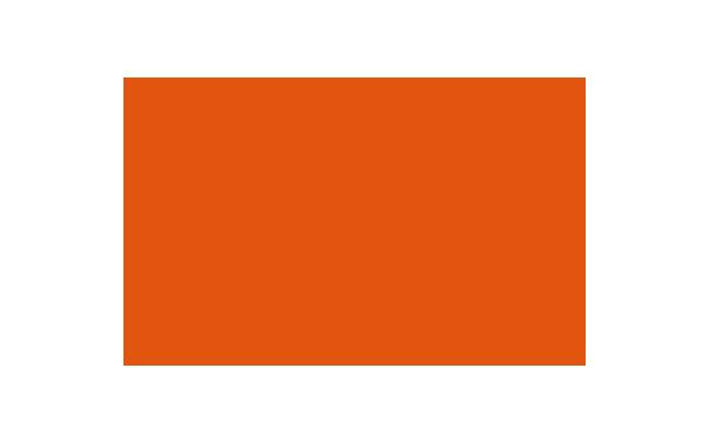 Gigamon标志